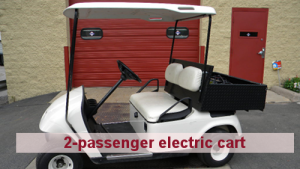 Cushman Motors Minneapolis rents 2-passenger electric carts