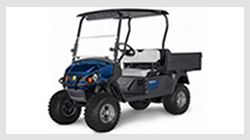 Cushman Hauler PRO-X electric utility vehicle. Click this image for details.